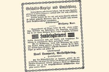 historie-1917